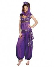 Burlesque-Box-Ladies-Belly-Dancer-Genie-Princess-Jasmine-Aladdin-Arabian-Nights-Adult-Fancy-Dress-Costume-0-2