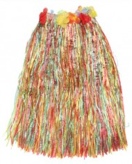 Colorful-Hawaiian-Tropical-Theme-Party-Hula-Luau-Grass-Dancer-Skirt-and-Bra-Set-0-0