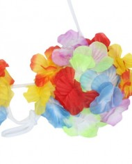 Colorful-Hawaiian-Tropical-Theme-Party-Hula-Luau-Grass-Dancer-Skirt-and-Bra-Set-0-5